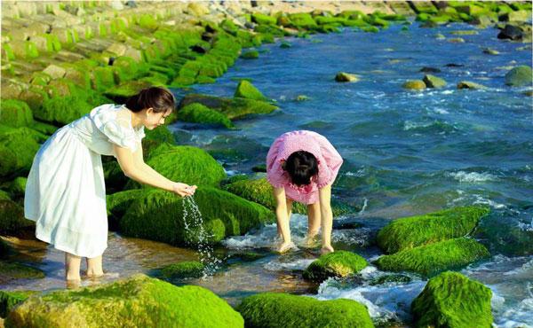 Kè chắn sóng Xóm Rớ (TP Tuy Hòa)