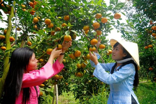 Miệt vườn Vĩnh Kim, Tiền Giang